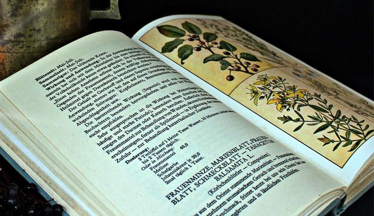 La medicina natural o tradicional ha sido documentada a lo largo de la historia en incontables libros y enciclopedias. Foto con fines ilustrativos: Pixabay.