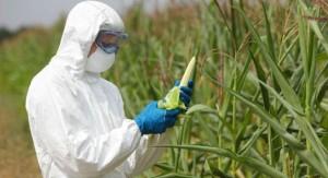 Experto español en producción agrícola sustentable llega a Uruguay