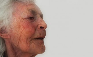 """""""Nuestro sentido del olfato no reside solamente en la nariz; hay receptores que se activan en el cerebro"""", afirma el estudio. Foto: Pixabay."""