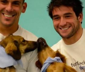 Jugadores de la selección junto a Animales Sin Hogar para el calendario 2016 de la Fundación Celeste