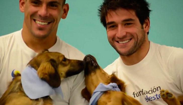 Jugadores de la selección junto a Animales Sin Hogar para el calendario 2016 de la Fundación Celeste .