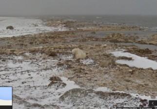COP21: Google Street View lanza campaña buscando se tome conciencia del calentamiento global
