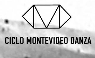 PLUG: comienza el Ciclo Montevideo Danza en el Teatro Solís bajo la dirección de Natalia Burgueño y Pablo Benítez. Foto: Facebook Ciclo Montevideo Danza