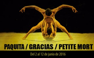 Gala V | Foto: Auditorio Nacional Adela Reta