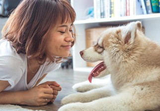 Los perros y sus dueños sincronizan sus corazones