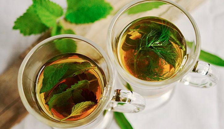 Propiedades y beneficios de la menta para el organismo. Foto: Pixabay