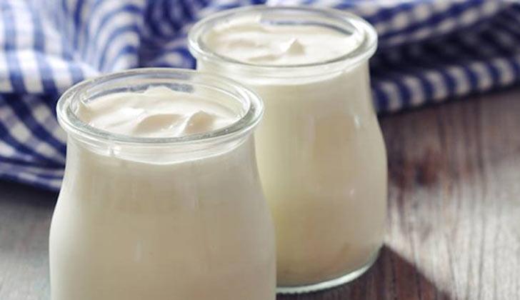 yogur-vegetal