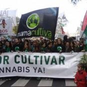 """""""Mama Cultiva"""", la ONG que promueve la legalización de marihuana medicinal"""