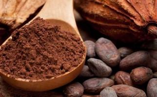 Propiedades y beneficios del cacao para el organismo Foto: Pixabay