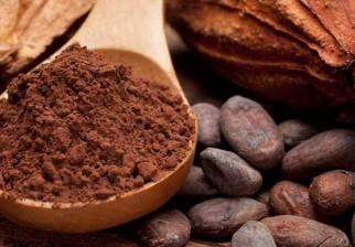 Propiedades y beneficios del cacao para el organismo