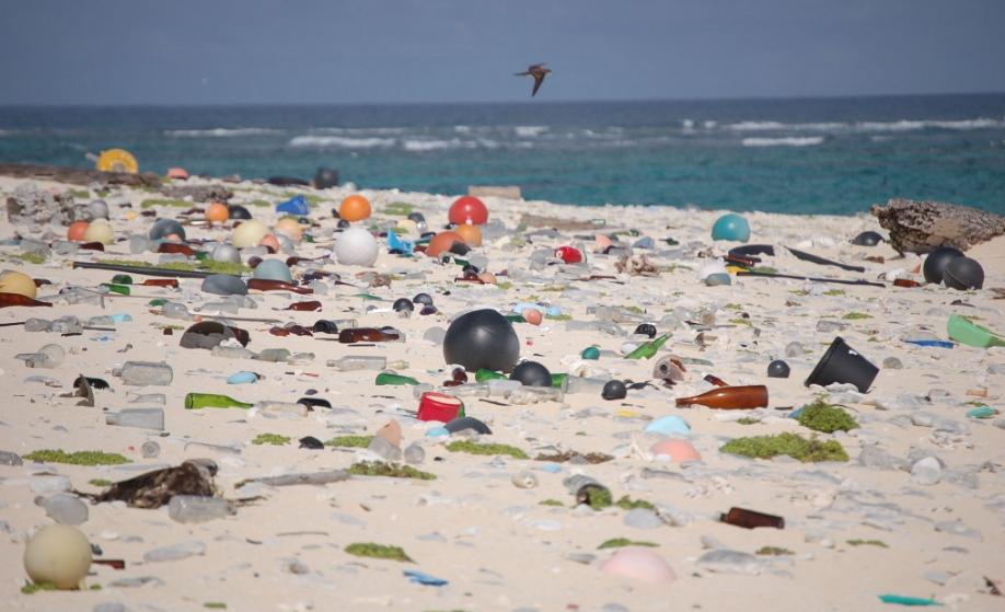 יותר מלוכלך מהחוף שלכם: האי עם כמות הפסולת הגדולה ביותר בעולם!