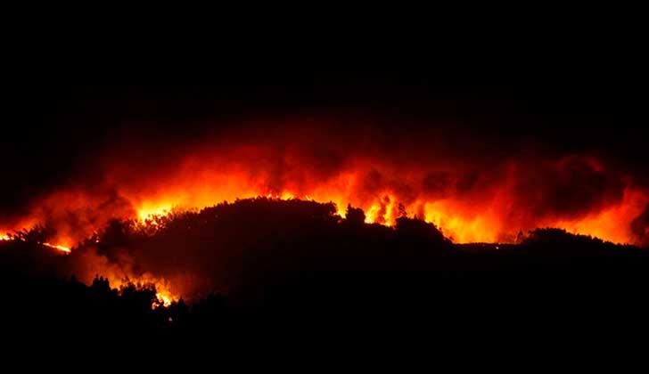 Portugal registra incendio con 62 muertos