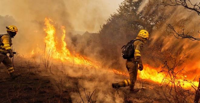 Intensos incendios azotan Galicia y ya provocan víctimas fatales.