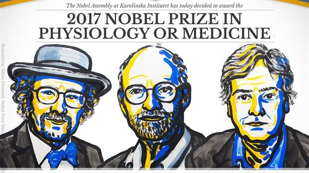premios-nobel-2017-2542857w620