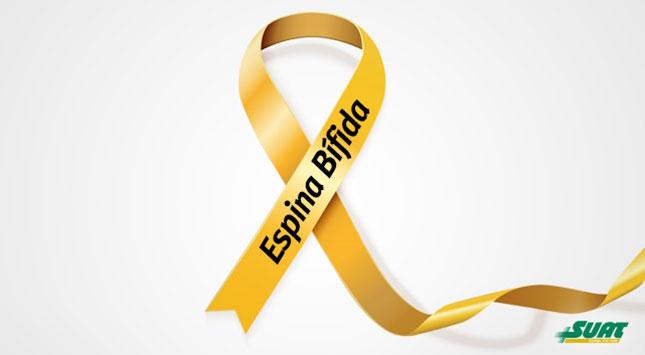 dia-internacional-de-la-espina-bifida