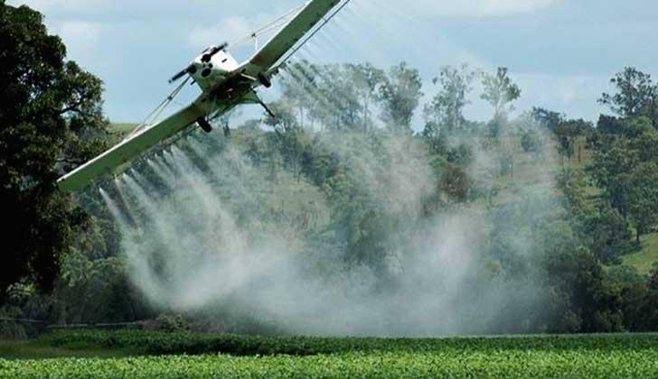 Europa renueva por cinco años la autorización del herbicida glifosato.