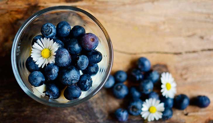 Beneficios y propiedades de los arándanos . Foto: Pixabay