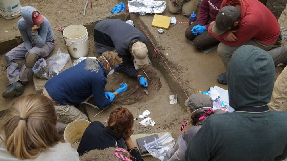 El equipo encontró los restos de dos bebés, pero pudieron secuenciar el genoma de uno solo. Foto: Ben Potter