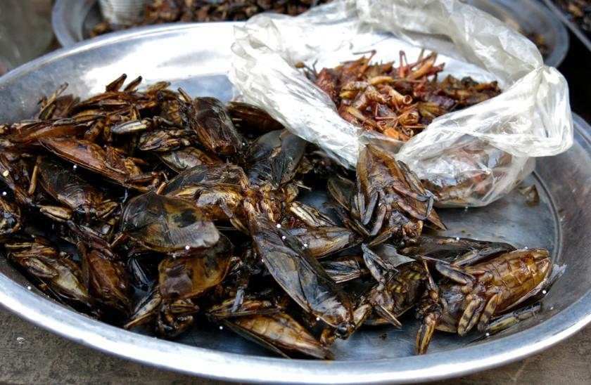 Cucarachas y saltamontes tostados listos para servir como alimento. Foto: Felicity Rainnie / Flickr