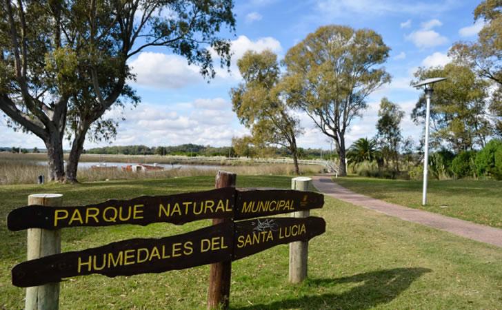 Parque Nacional de los Humedales de Santa Lucía / Foto: Intendencia Montevideo