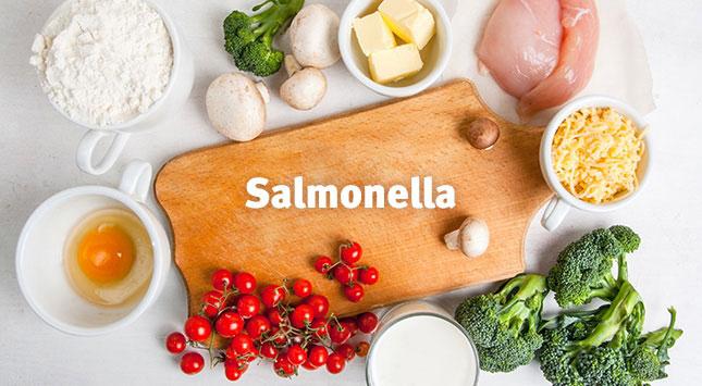 que-debo-saber-sobre-la-salmonelosis