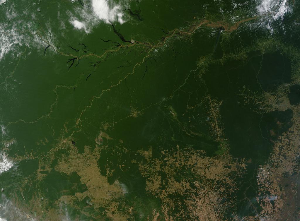 Foto tomada por la NASA en donde se ven partes de la Amazonia convertidas en pastizales o estepas (color marrón)
