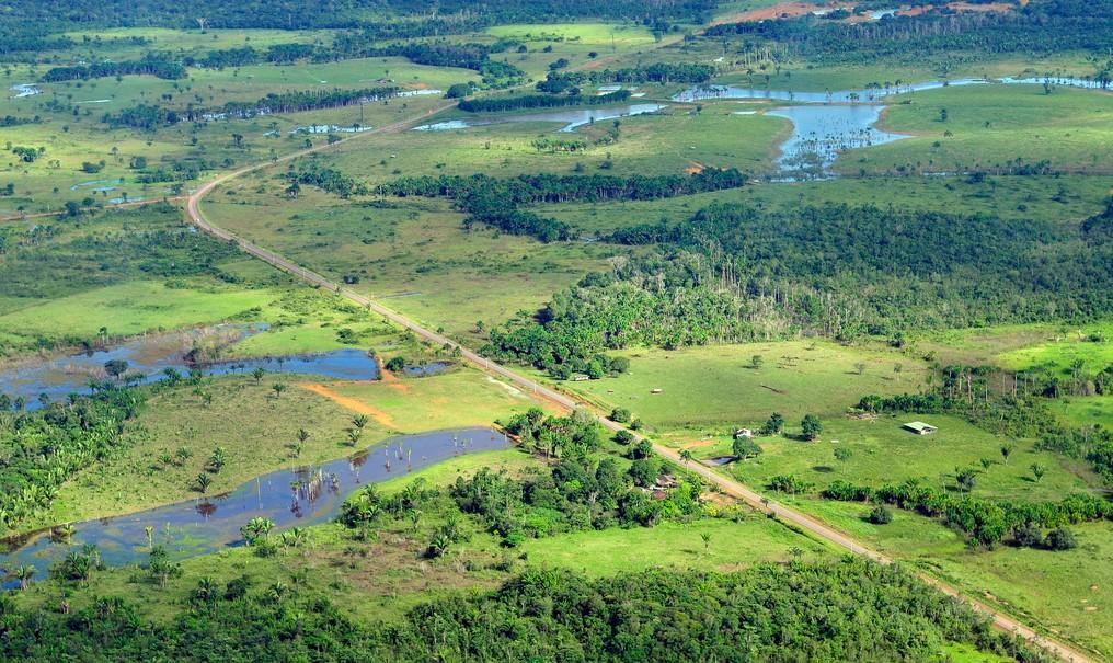 Vista de la Amazonia en Mamaus, Brasil, en donde se tala bosque para hacer pastizales para ganadería. Foto: CIAT