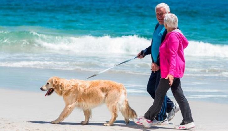 Realizar media hora diaria de actividad física moderada  reduce el riesgo de muerte.