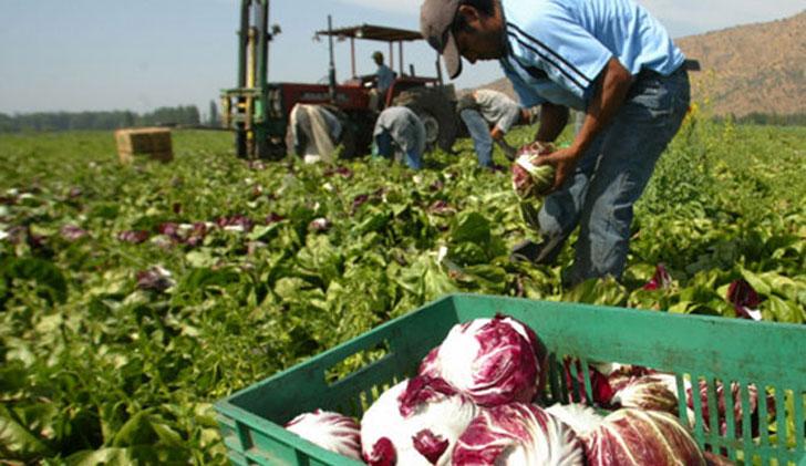 productores-pequeños-uruguay-e