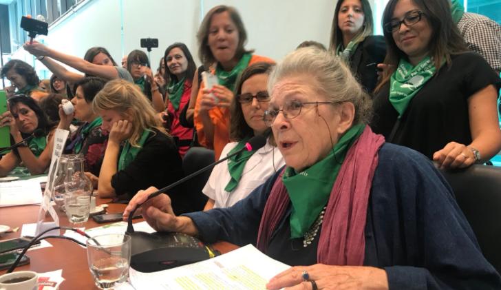 El proyecto sobre aborto legal fue presentado en el Congreso. Foto:@raquelvivanco