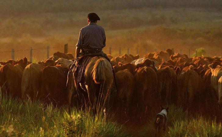 Landarbeiter: Autoconvocados verteidigen ein Modell der Agrarindustrie, das Reichtum und Land konzentriert. Foto: Alle Felder