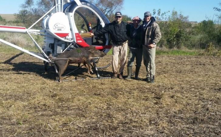 Cavani y la polémica por cazar jabalíes