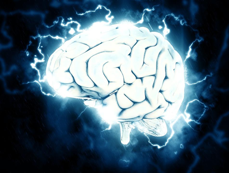 Nuevas partes del cerebro de estudiantes se vuelven activas cuando ...