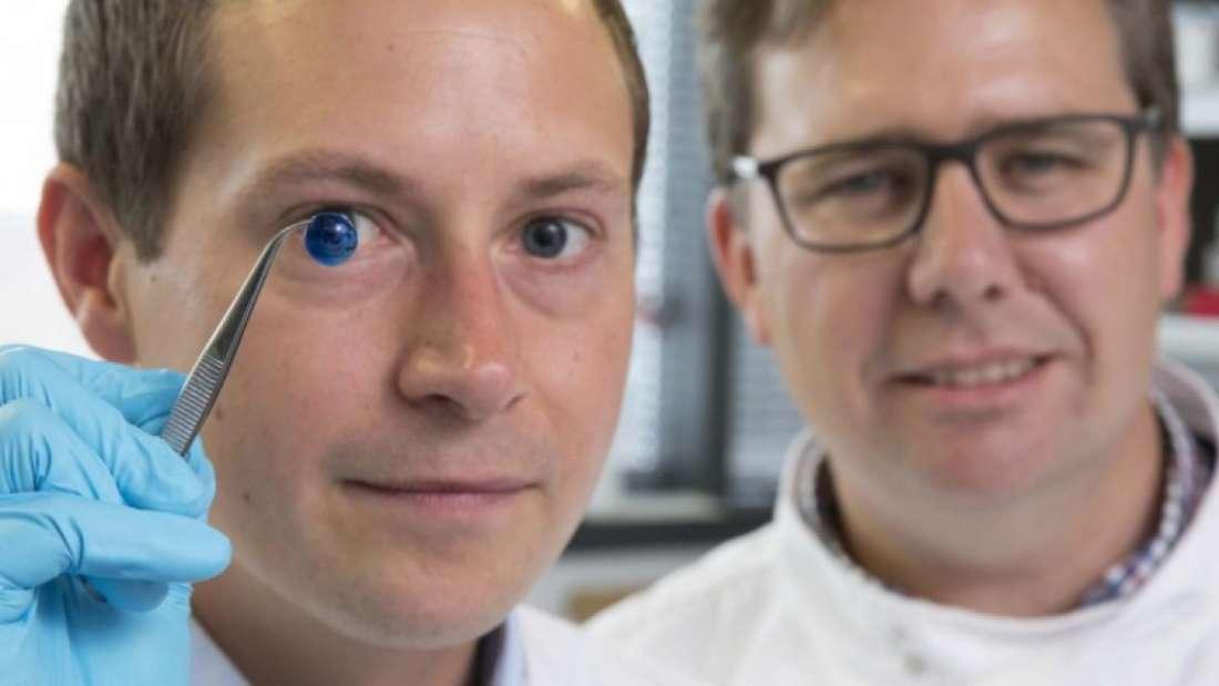 El doctor Steve Swioklo y el profesor Chen Connon muestran una versión teñida de la córnea, cuyo color le fue dado para manipularla más fácilmente. Foto: Universidad de New Castle
