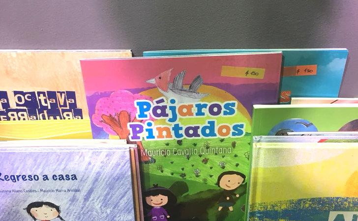 Pajaros Pintados, un libro escrito por Mauricio Cavallo Quintana y editado por LARED21