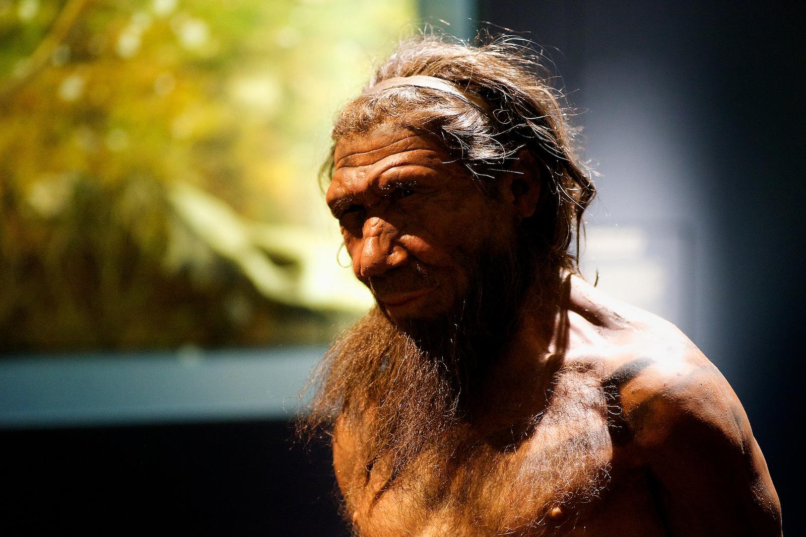 Representación de un homo neardenthalensis. Foto: Flickr / Paul Hudson