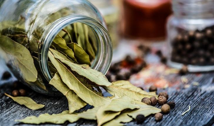 Beneficios de las hojas de  laurel para la salud. Foto: Pixabay