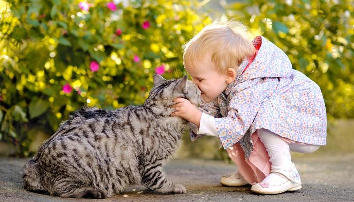El maltrato hacia los animales puede indicar abuso infantil. Foto ilustrativa Pixabay
