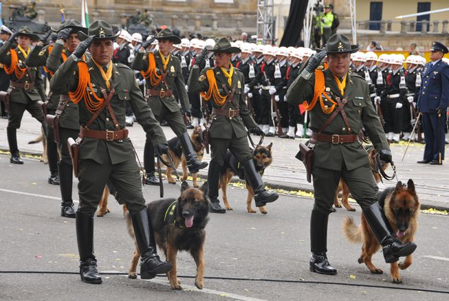 Sombra (izq.) marcha con un oficial de policía en un desfile oficial. Foto: Policía Nacional de los colombianos / flickr