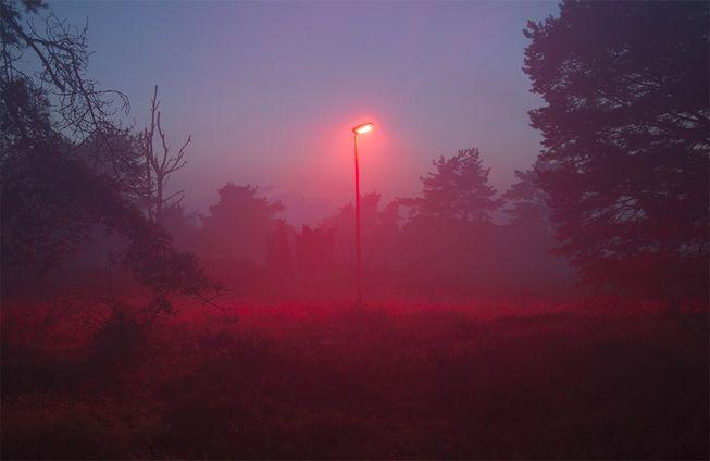 red-lights-bats.jpg.653x0_q80_crop-smart