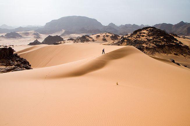 El Sahara es el desierto más grande del mundo. Foto: Luca Galuzzi/Wiki Commons