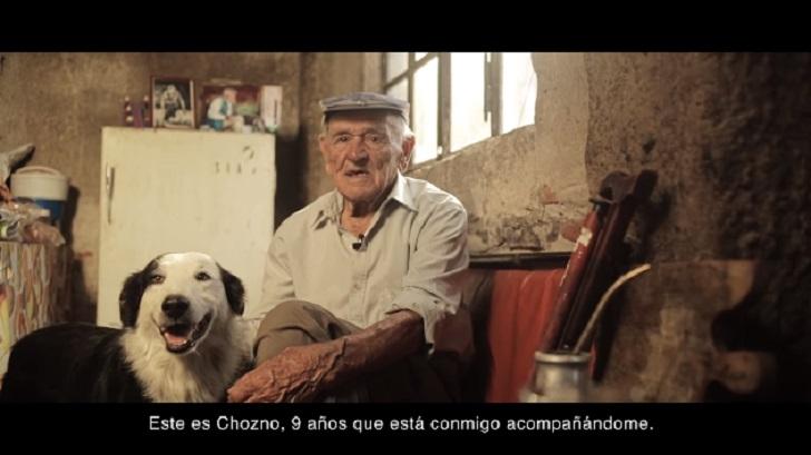 """Video viral: """"Adoptá un perro y nunca vas a estar solo"""""""