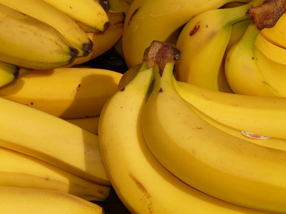 Banana del tipo Cavendish. Foto: Pixabay