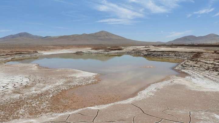 Un poso de agua residual de lluvia en el desierto de Atacama. Foto: Carlos González Silva