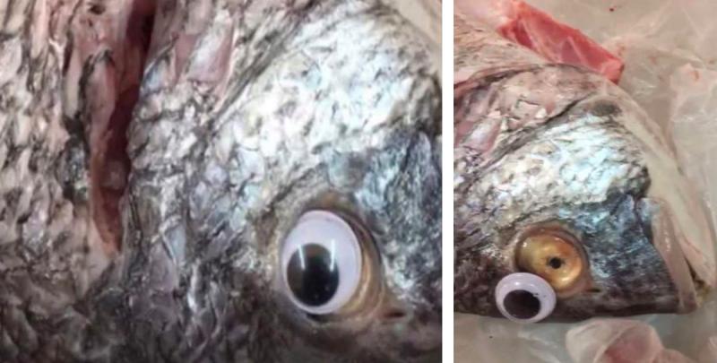 Esta imagen se viralizó después de que una pescadería en Kuwait fuera descubierta poniéndole ojos de plástico a sus pescados para que pareciesen más frescos.
