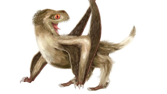 pterosaur_16x9