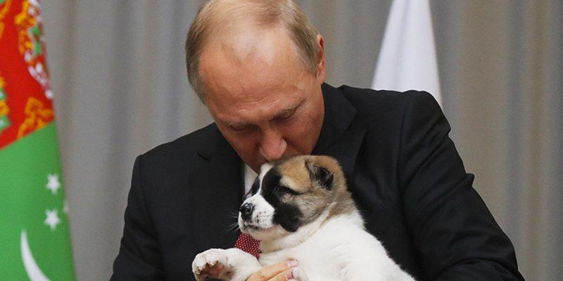 Vladimir Putin es amante de los perros