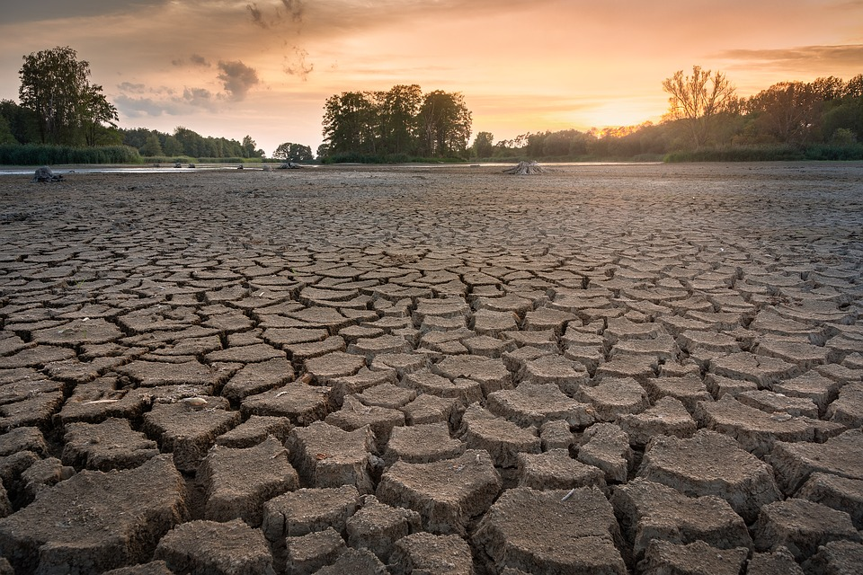 drought-3618653_960_720