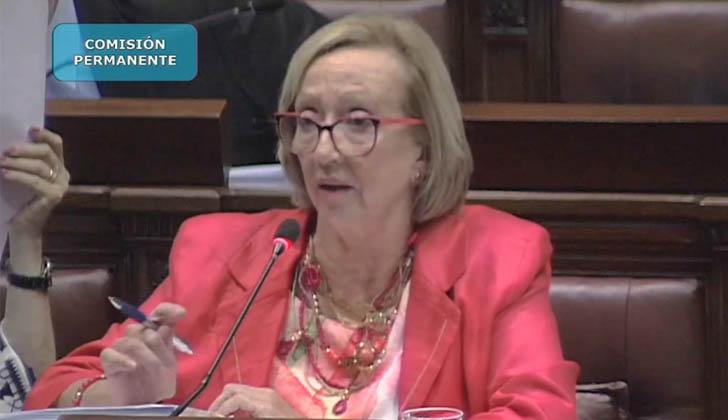 Ministra María Julia Muñoz, ante el Parlamento.