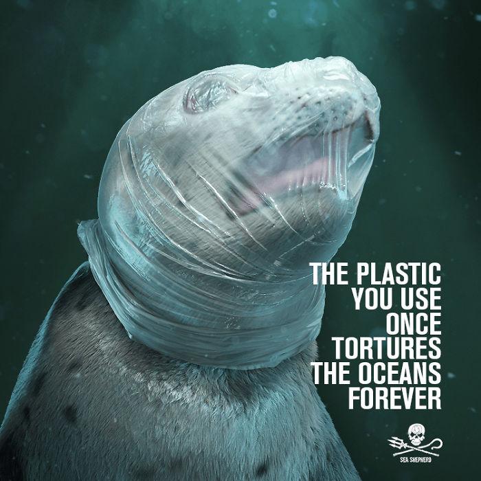 Sea-Shepherd-plastiqueOceans2019-5-5c8b2cf9b8fca-png__700